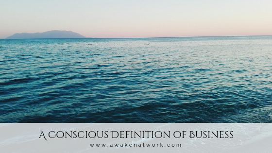 A Conscious Definition of Business by Sonya Amrita